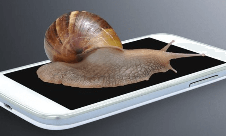 snail on a slow phone
